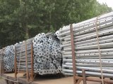 Puntelli registrabili dell'acciaio dell'armatura di prezzi di fornitore