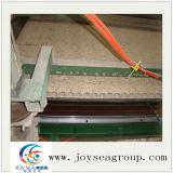 Panneau de particules de qualité supérieure creux fabriqué en Chine