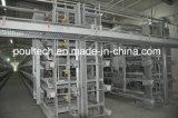 Type automatique de H cage de matériel de ferme avicole pour le poulet de couche