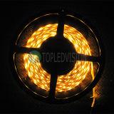 2835 120LEDs/M buena luz IP20 de la cuerda del precio LED para la iluminación