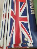 Знамя винила PVC напольный рекламировать печатание цифров нестандартной конструкции для сбывания