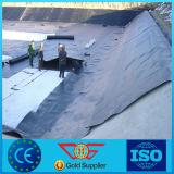 HDPE Geomembrane con la mejor fuerza para la construcción de carreteras de la charca de pescados del terraplén