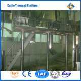 Best Price Cattle Slaughterhouse with High Quality