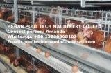 De automatische Apparatuur van de Kooi van de Kip van het Ei van het Frame van H voor Landbouwer