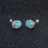Decoration AAA CZ Earring 925 Silver Stud Earring Fashion Jewelry (561882882901)