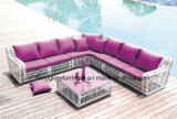 Muebles de mimbre relax Sofás de jardín (TG-010)