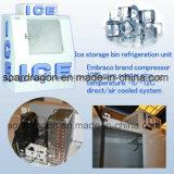 De Bak van de Opslag van het ijs met -12 Graden C