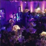 Nuevos candelabros de la boda de la decoración del metal 2018 y de la boda del cristal para el partido del soporte de flor de Weddingcenterpiece