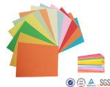 Papel del color de las fuentes de oficina