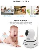 камера слежения радиотелеграфа IP объектива 720p 3.6mm фикчированной спрятанная камерой