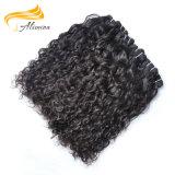 Comercio al por mayor sin enredos de tejido de pelo pelo Remy Dropshipping virgen