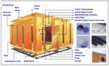 Kamer van het Typeonderzoek van de temperatuur en van de Vochtigheid Walk-in (WS reeks)