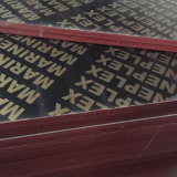 triplex van het Bouwmateriaal van 15mm Het Bruine/Zwarte AntislipFilm Onder ogen gezien
