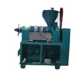 Pressão do Óleo do Kernel Expulsor de óleo de sementes para óleo de cozinha