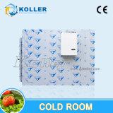 スペース節約の冷蔵室はとの氷の保存のための凝縮の単位をモノラル妨げる