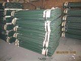 판매를 위한 녹색 입히는 강철 포스트