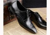 革黒いなまけ者の靴をひもで締めさせる人