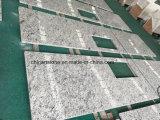 De Chinese Kerstman Cecilia Light Granite Countertop van de Fabriek voor Keuken