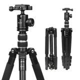 Professioneller beweglicher Mg-Aluminiumlegierung-Stativ Monopod u. Kugel-Kopf für Stativ SLR Kamera-Canon-Nikon Petax Sony