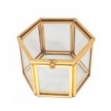Las más nuevas fuentes de cristal de encargo decorativas de lujo del rectángulo de regalo del embalaje de la joyería del metal