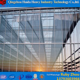 Парник тоннеля стеклянной крышки с Hydroponic системами для Aquaponics