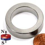 Magneet van de Ring van de Deklaag van de fabriek de Permanente