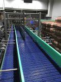 Nuevo diseño Hairise Venta caliente directamente Conveyor Belt Systems