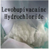 99% Purity Levobupivacaine Hydrochloride Powder 27262-48-2