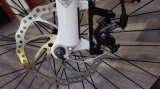 新しい作られた都市リチウム電池が付いている電気自転車