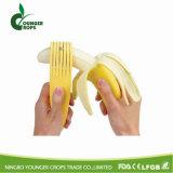 De Snijder van de banaan