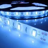 la cinta de los 3m asoció la lámpara de la tira del blanco 5630 LED de IP20 DC12