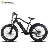 Bicyclette électrique de gros pneu de MTB avec 500W le moteur Ebike