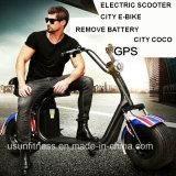 la bici Pocket elettrica 1500W con due unità rimuove la batteria