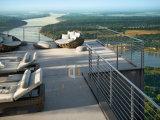 Pasamano/barandilla/cerca del acero inoxidable para el balcón o la plataforma de la visión
