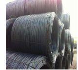 コイルの主な品質の熱間圧延の鋼板、鋼鉄コイルSAE1006