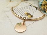 De Halsbanden van de verklaring in Messing met Goud voor Vrouwen wordt geplateerd die
