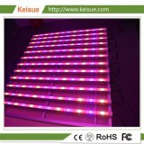 Fixture croissant avec 12 LED Lampes Grow