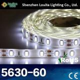 Alta illuminazione di striscia flessibile 12V di lumen 5630