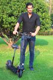 バイクのWth折る電気小型の400Wモーター