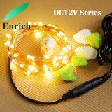 DC12V kupferner Draht/silbernes Zeichenkette-Licht des Draht-LED mit Adapter für Weihnachtsdekoration