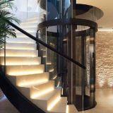 &Factory Lift met geringe geluidssterkte 0920 van het Huis van het Roestvrij staal van de Prijs