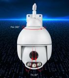3,6 мм объектив HD инфракрасный безопасности IP-Face Recognition камеры