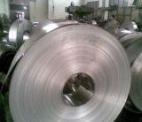 Tira/bobina del acero inoxidable con alta calidad