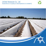 Agriculture Nonwoven Fabric pour Film