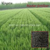 O fertilizante composto baseado carbono de Kingeta contem Cfu sobre 200million