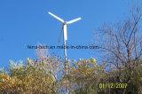 Fd-1квт ветровой турбины в горизонтальной плоскости (Фиксированный Baldes генератора)