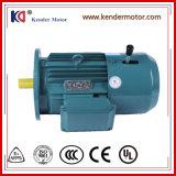 L'induction électrique triphasé Yej série (électrique) Moteur de pompe à eau