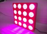 De interior crecer el sistema de iluminación 1000W LED crecen espectro completo ligero