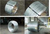 Fil en acier galvanisé plongé chaud de faisceau pour ACSR, câble de haubanage, fil de séjour