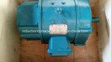 De hoge van de Vraag 12V Elektrogelijkstroom Motor van de Boot